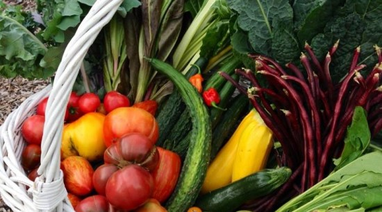 8 Really Good Reasons to Eat Local Food